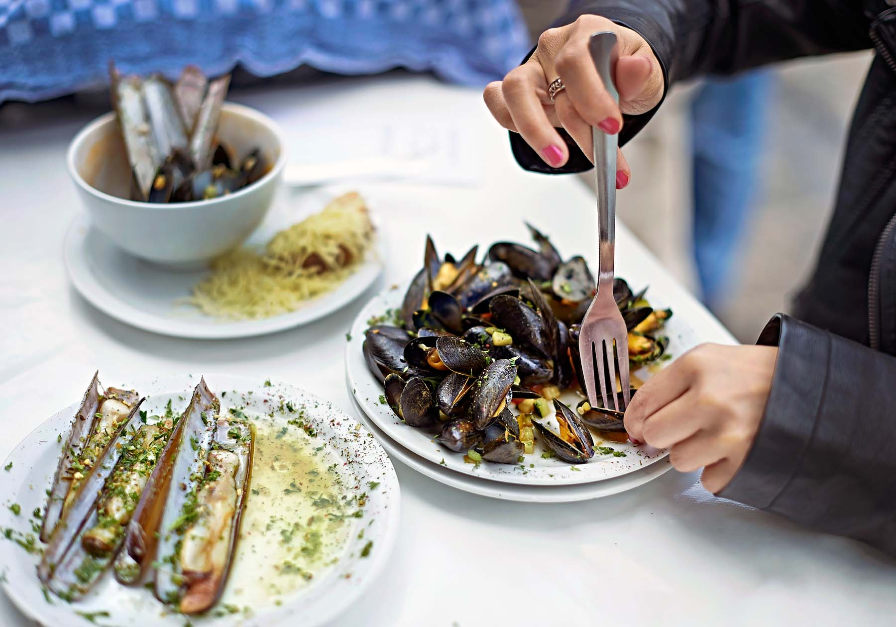 noordzee la mer du nord quality seafood in brussels and antwerp. Black Bedroom Furniture Sets. Home Design Ideas